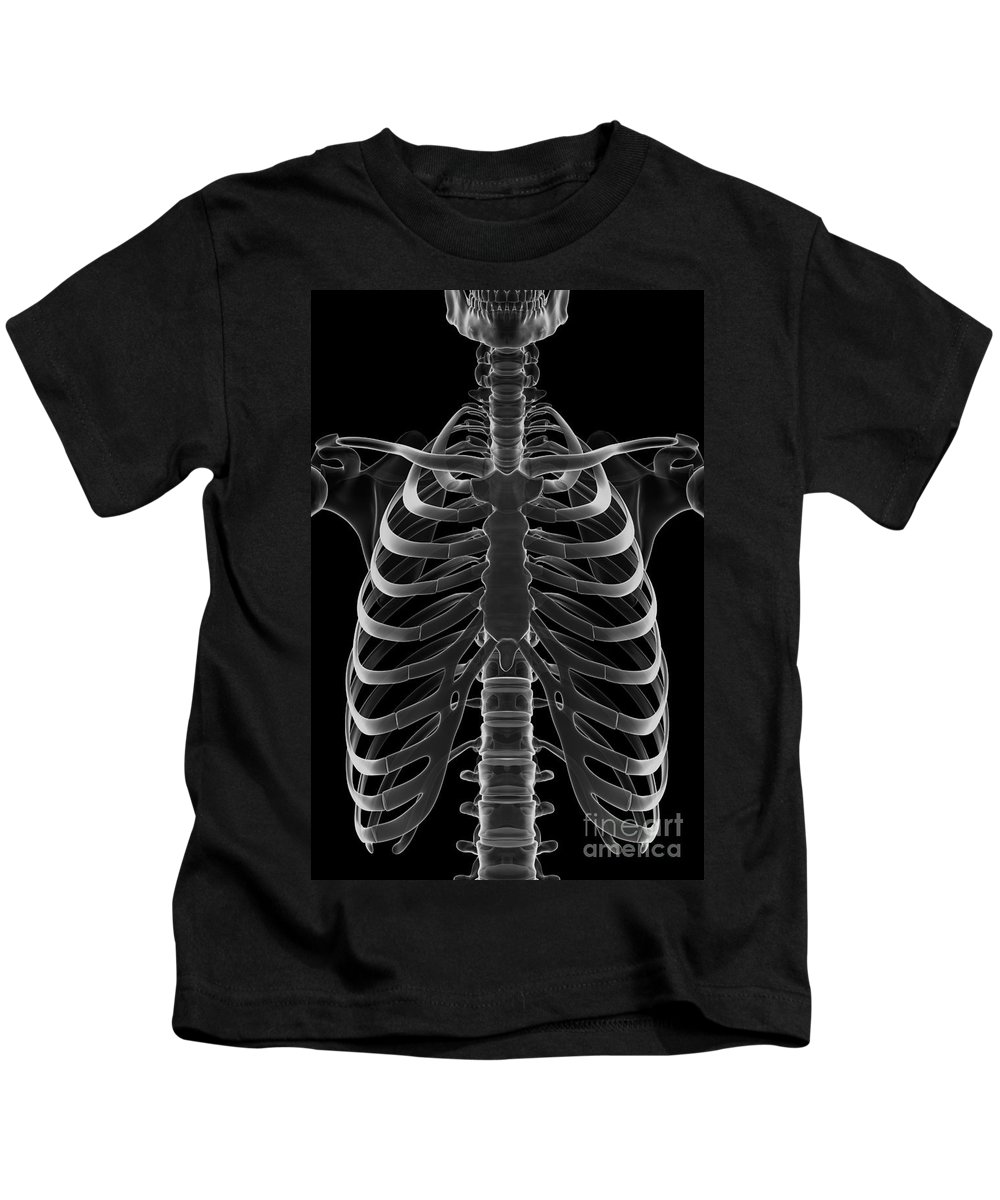 3d Visualisation Kids T-Shirt featuring the photograph The Rib Cage by Science Picture Co