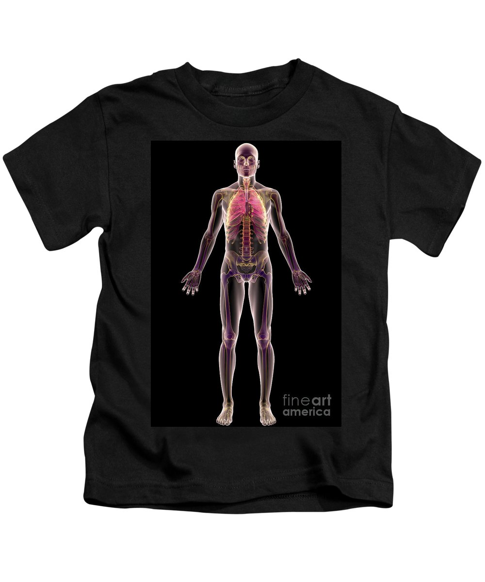 Transparent Skin Kids T-Shirt featuring the photograph The Respiratory System by Science Picture Co