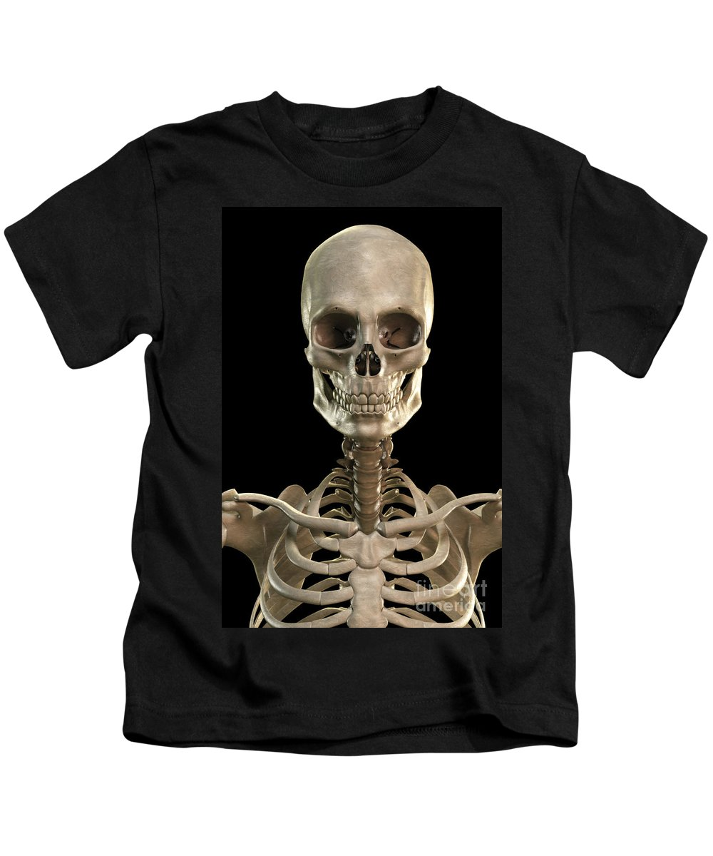 Vertical Kids T-Shirt featuring the photograph Bones Of The Head And Upper Thorax by Science Picture Co