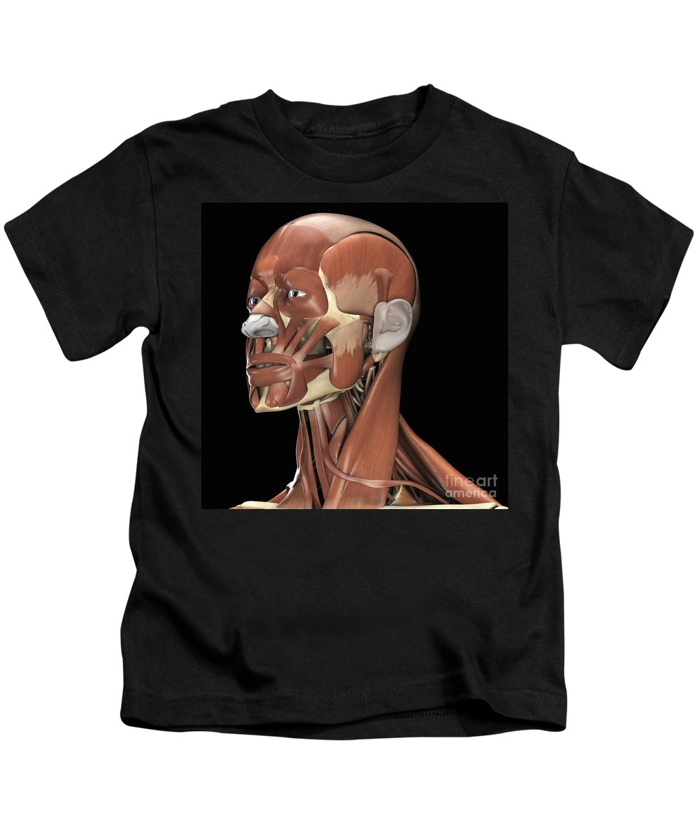 3d Visualization Kids T-Shirt featuring the photograph Muscles Of The Head And Neck by Science Picture Co