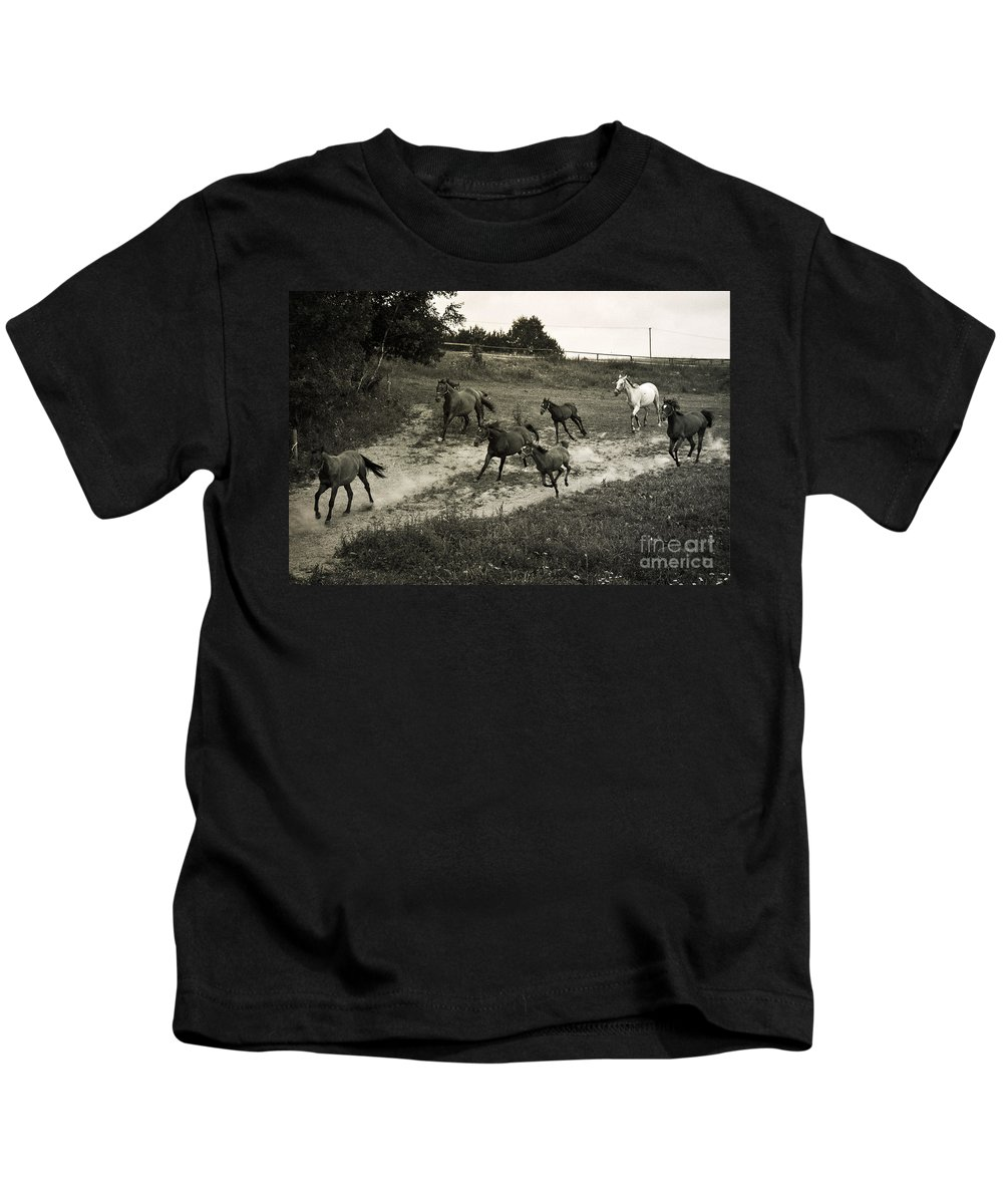 Horses Kids T-Shirt featuring the photograph Running Free by Angel Ciesniarska
