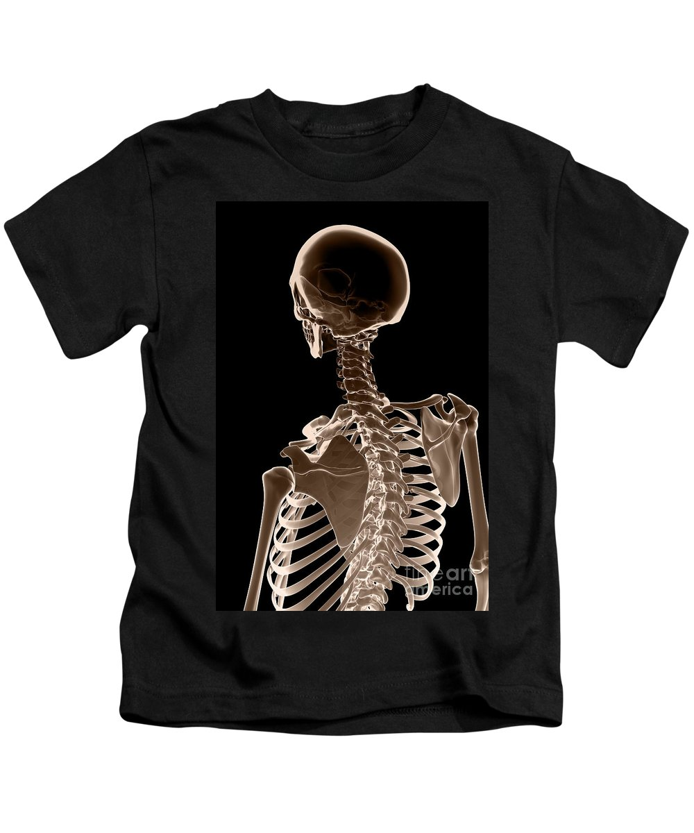 Digitally Generated Image Kids T-Shirt featuring the photograph Bones Of The Upper Body by Science Picture Co