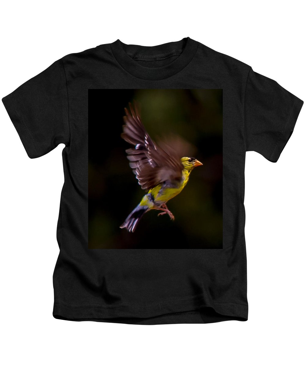 Gold Finch Outdoors Wild Nature All Prints Are Available In Prints Kids T-Shirt featuring the photograph Gold Finch by Brian Williamson