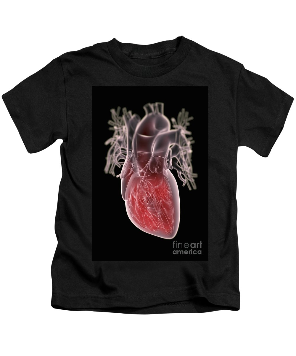 Valves Kids T-Shirt featuring the photograph Human Heart by Science Picture Co