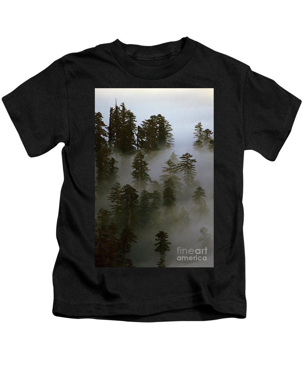 Nature Kids T-Shirt featuring the photograph Redwood Creek Overlook With Giant Redwoods Sticking Out Above Lo by Jim Corwin