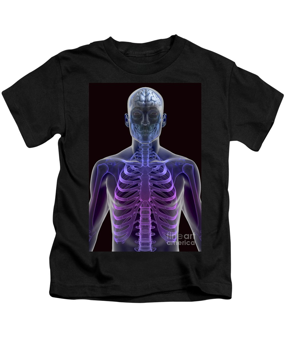 Skeletal System Kids T-Shirt featuring the photograph Human Brain by Science Picture Co