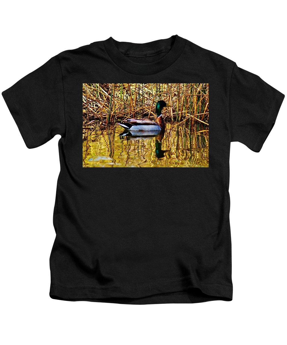 Kids T-Shirt featuring the photograph 5.4.2014 Wild Mallard by Daniel Thompson