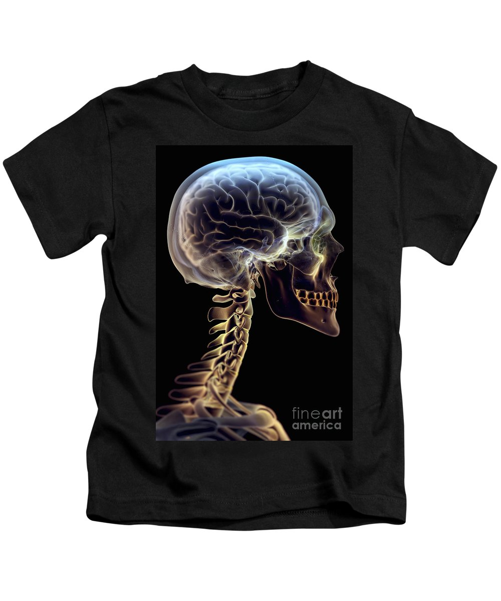 3d Visualisation Kids T-Shirt featuring the photograph Human Brain by Science Picture Co