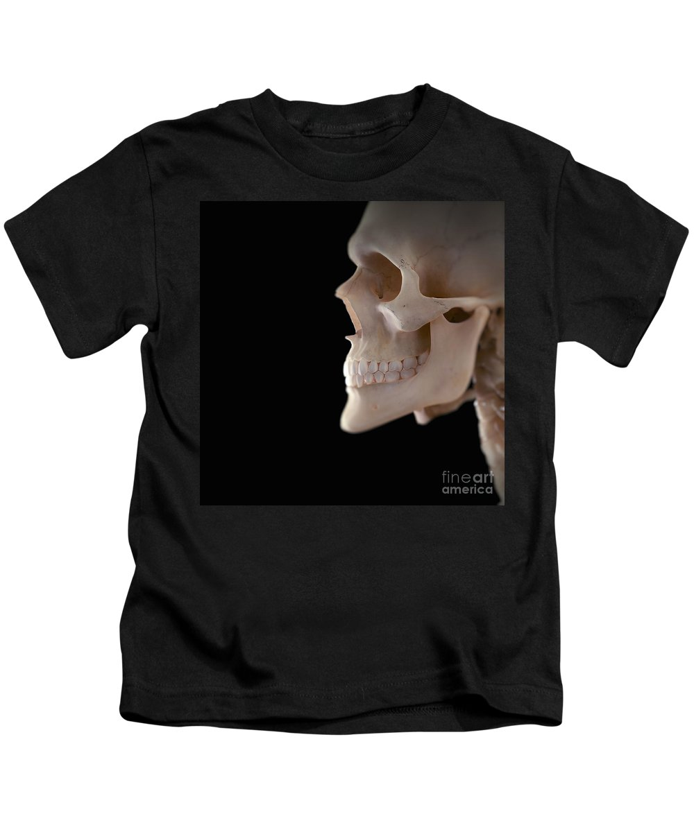 Human Body Kids T-Shirt featuring the photograph Human Skull by Science Picture Co