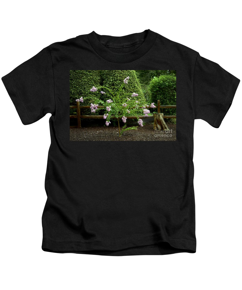 Flowers Kids T-Shirt featuring the photograph A Starburst Of Pink by Paul W Faust - Impressions of Light