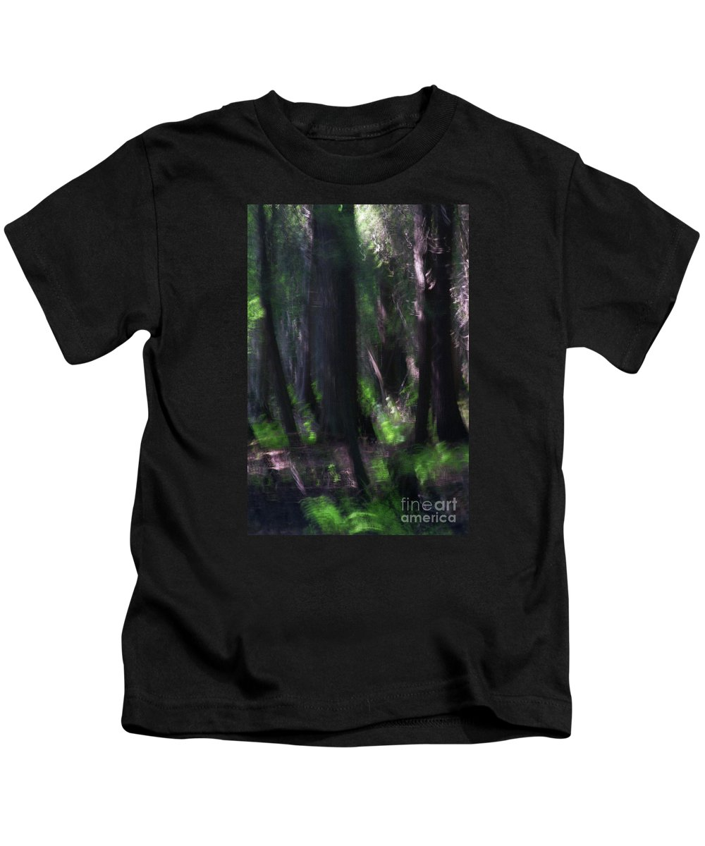 Forest Kids T-Shirt featuring the photograph A Thin Veil by Linda Shafer