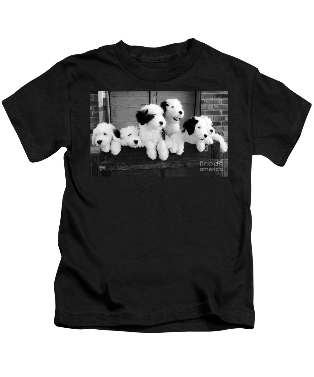 #old #english Kids T-Shirt featuring the photograph A Trunk Full by Kathleen Struckle