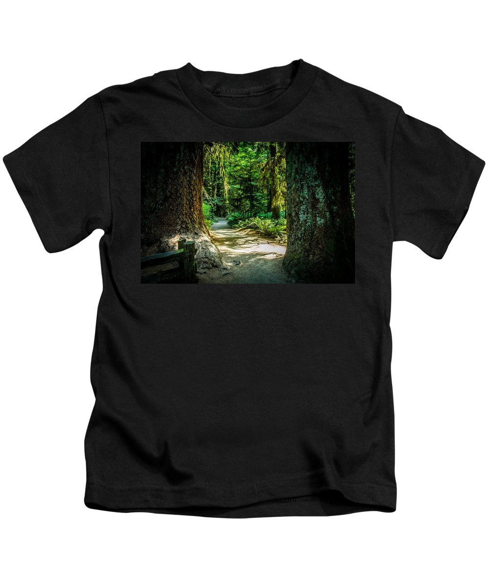 Old Growth Forest Kids T-Shirt featuring the photograph Pathway Cathedral Grove by Roxy Hurtubise