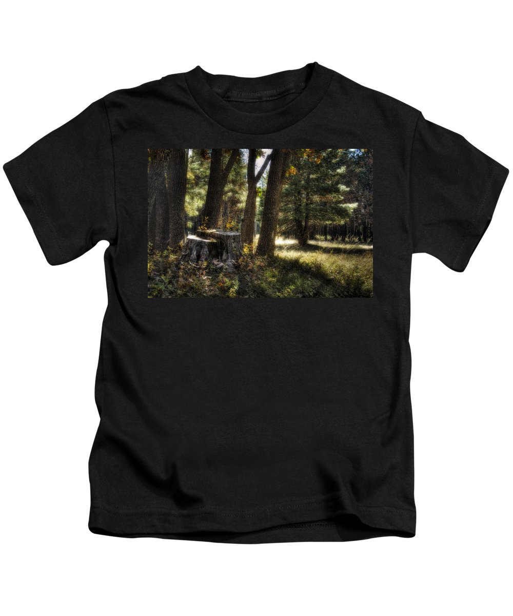 Arizona Kids T-Shirt featuring the photograph A Walk In The Woods by Saija Lehtonen