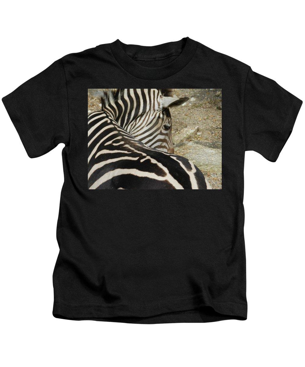 Zebra Kids T-Shirt featuring the photograph All Stripes Zebra 2 by Heather Jane