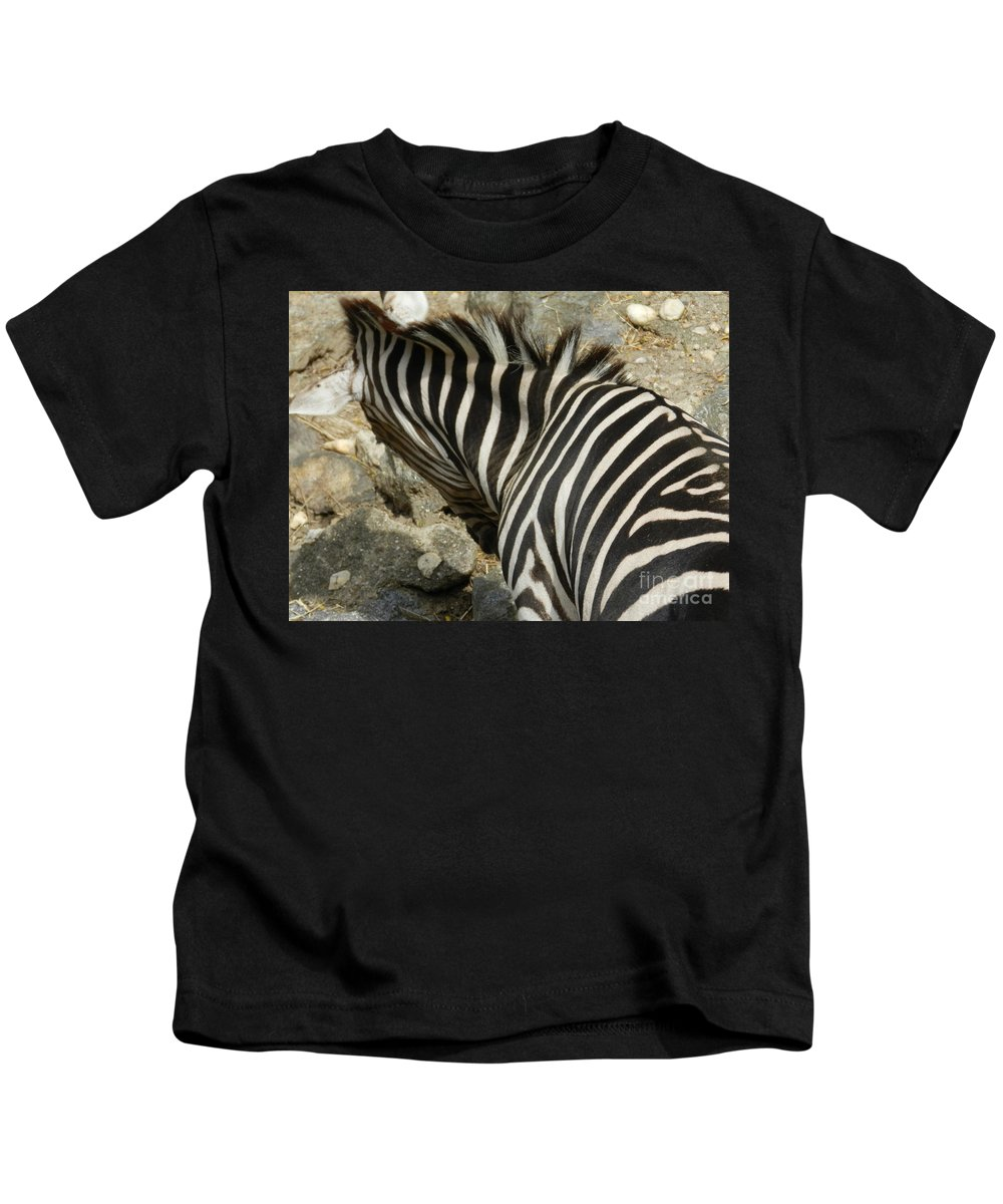 Zebra Kids T-Shirt featuring the photograph All Stripes Zebra 3 by Heather Jane