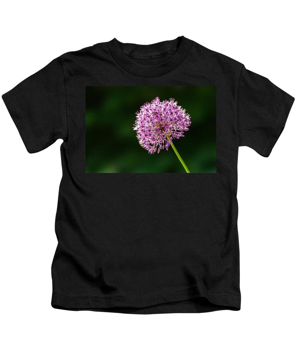 Allium Kids T-Shirt featuring the photograph Allium Flower by Alexander Senin