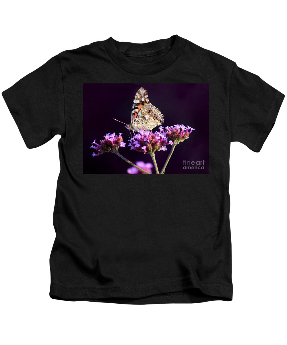 Lepidoptera Kids T-Shirt featuring the photograph American Painted Lady Butterfly Purple Background by Karen Adams