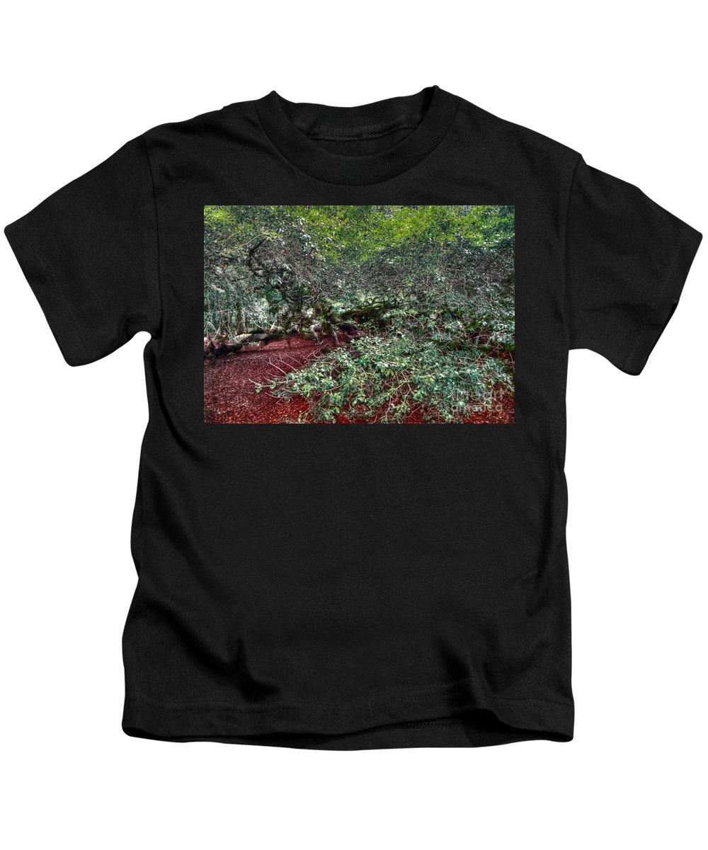 Angel Kids T-Shirt featuring the photograph Angel Oak Tree 3 by Kathleen Struckle