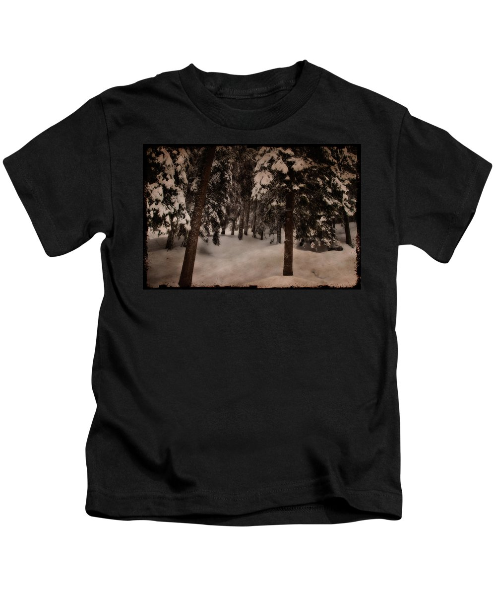 Environment Kids T-Shirt featuring the photograph Antique Woodscape by Roberto Pagani