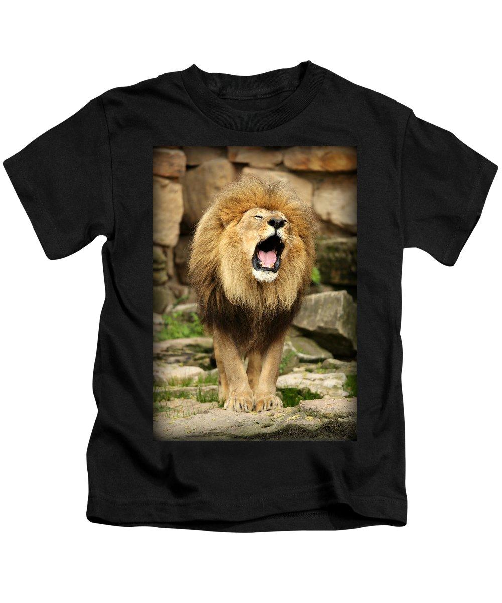 Lion Kids T-Shirt featuring the photograph Aslan's Roar by Stephen Stookey