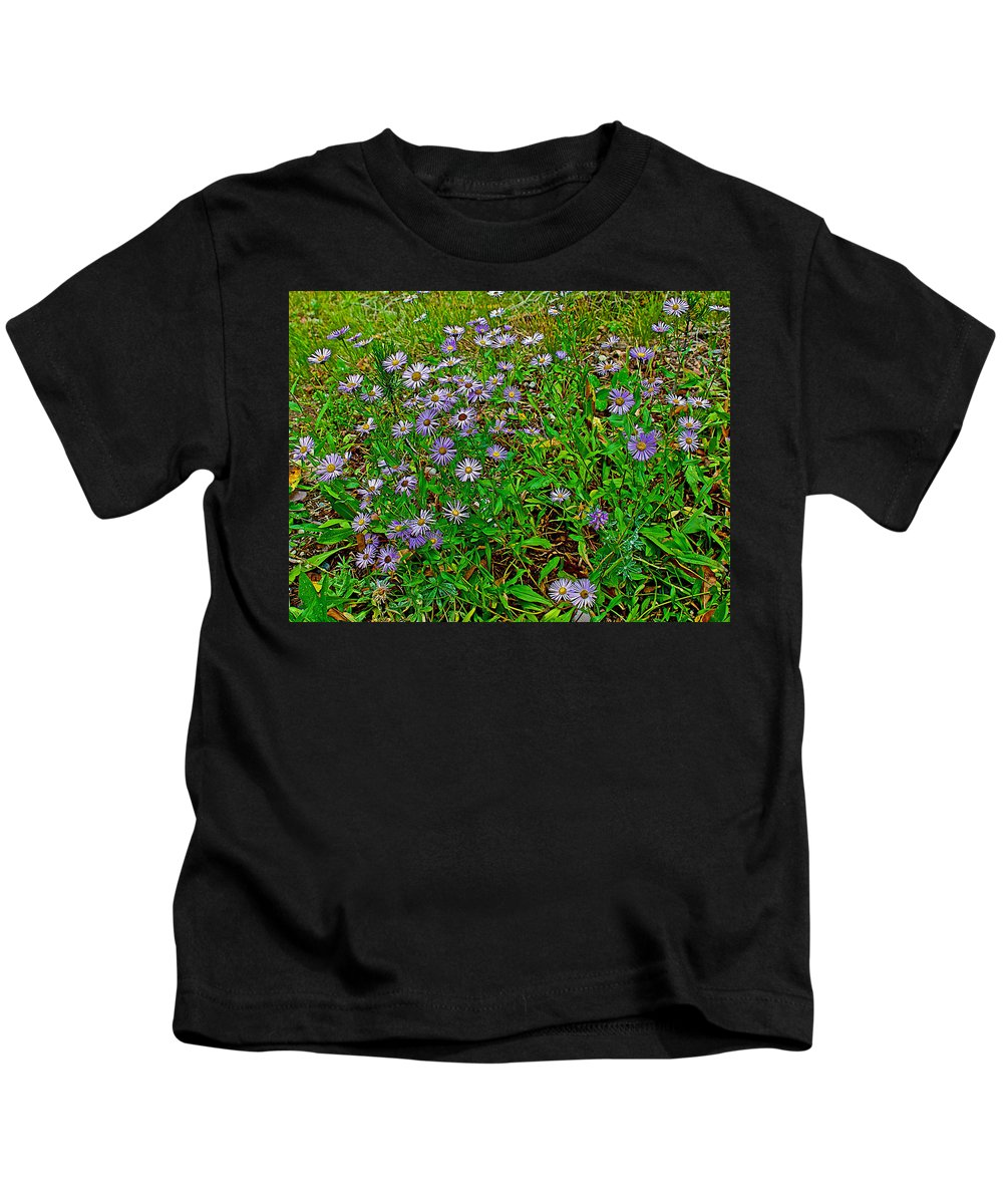 Asters On Heron Lake Trail In Grand Teton National Park Kids T-Shirt featuring the photograph Asters On Heron Lake Trail In Grand Teton National Park-wyoming- by Ruth Hager
