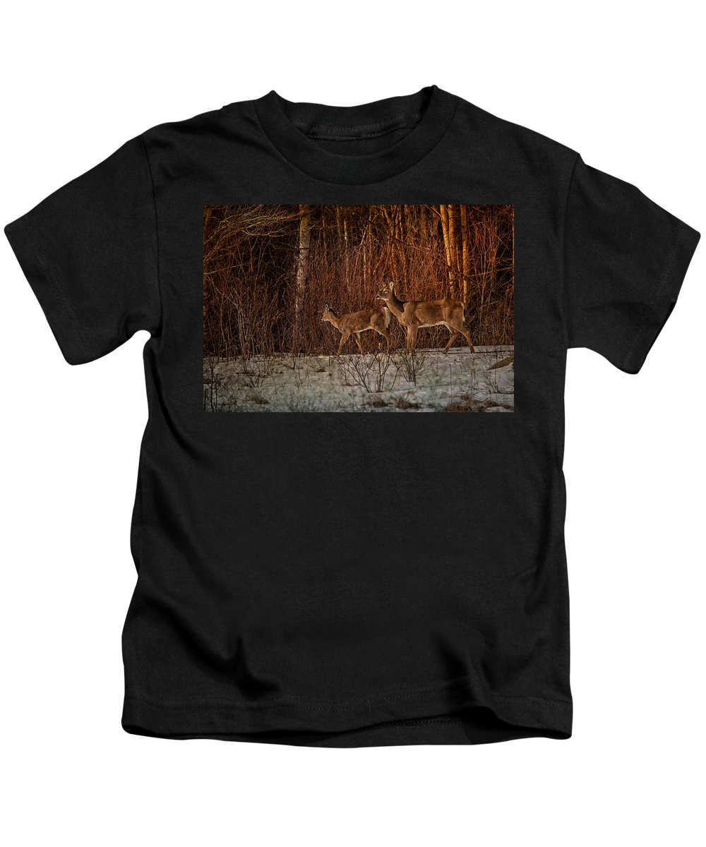 Deer Kids T-Shirt featuring the photograph At The Edge Of The Woods by Susan Capuano