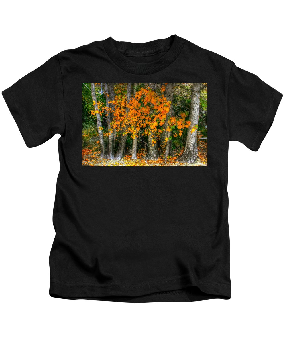 Colourful Kids T-Shirt featuring the photograph Autumn Breakout No.2 by Jenny Setchell