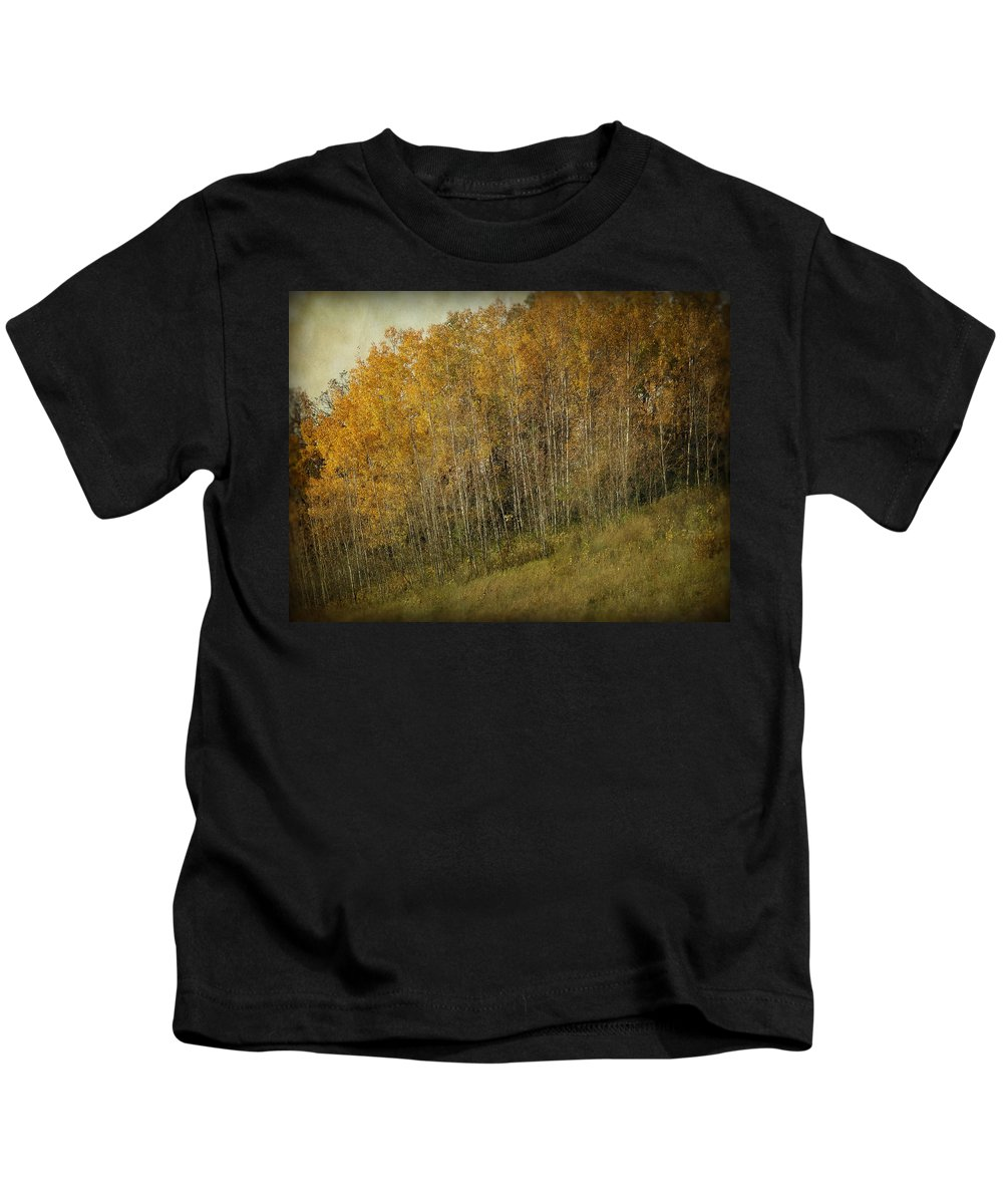 Fall Kids T-Shirt featuring the photograph Autumn Glory by Lucinda Walter