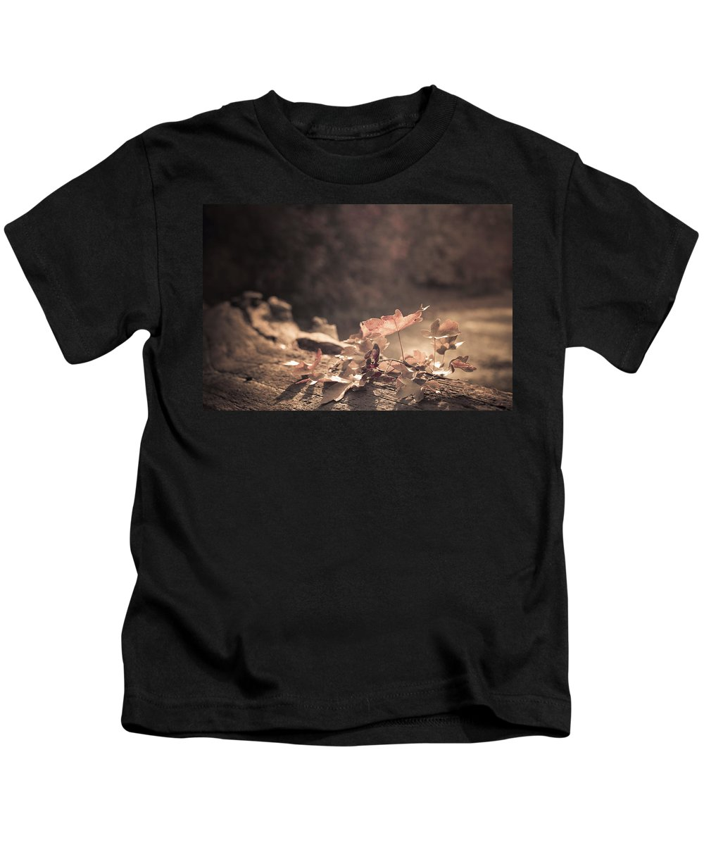 Autumn Kids T-Shirt featuring the photograph Autumn Leaves by Amanda Elwell