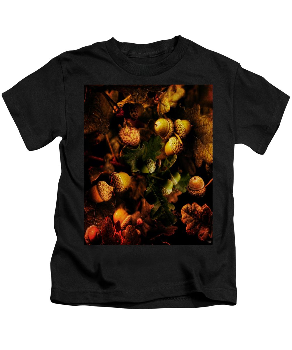 Acorn Kids T-Shirt featuring the photograph Autumn Oak by Chris Lord