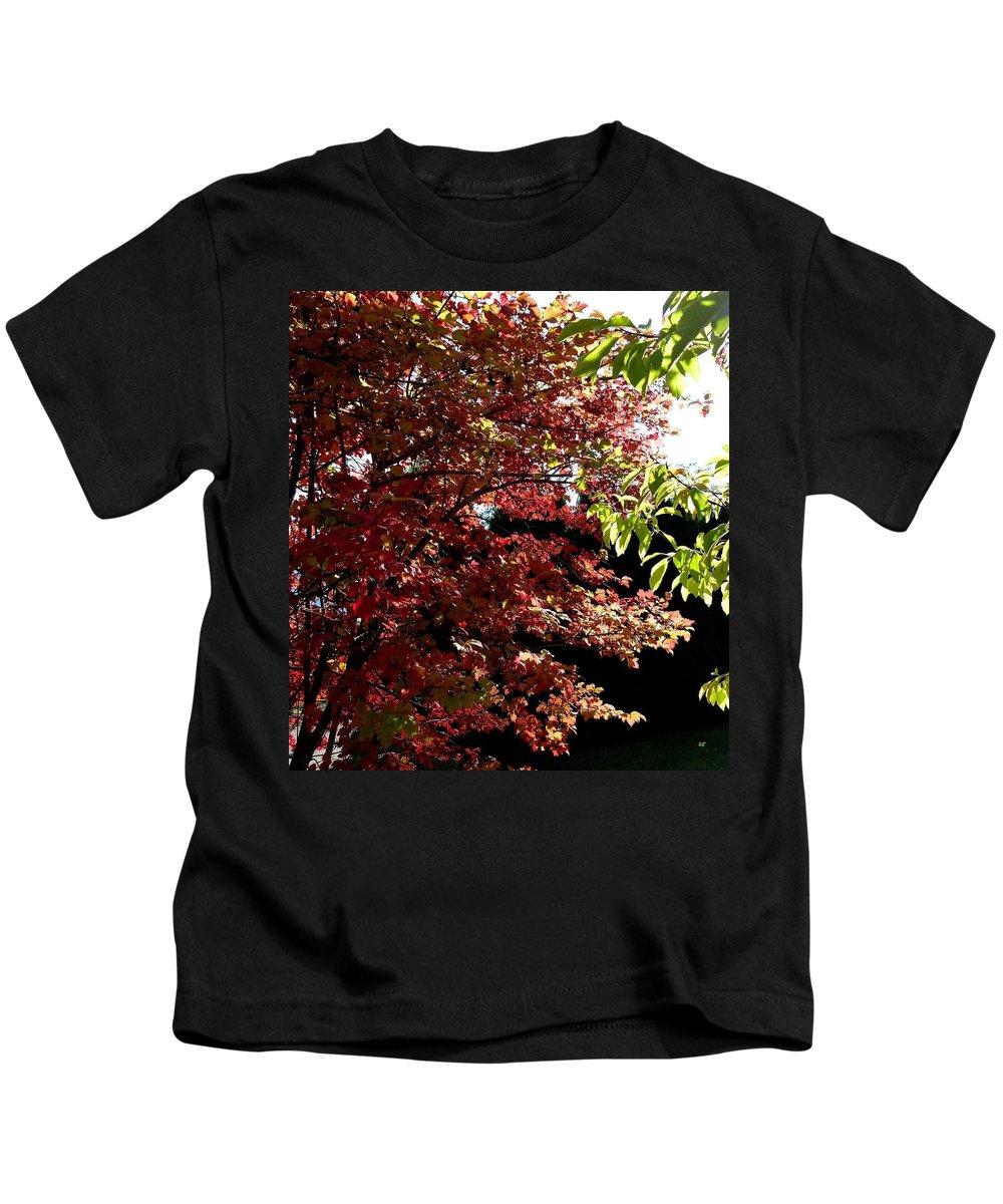 Autumn Snowball Bush Kids T-Shirt featuring the photograph Autumn Snowball Bush by Will Borden
