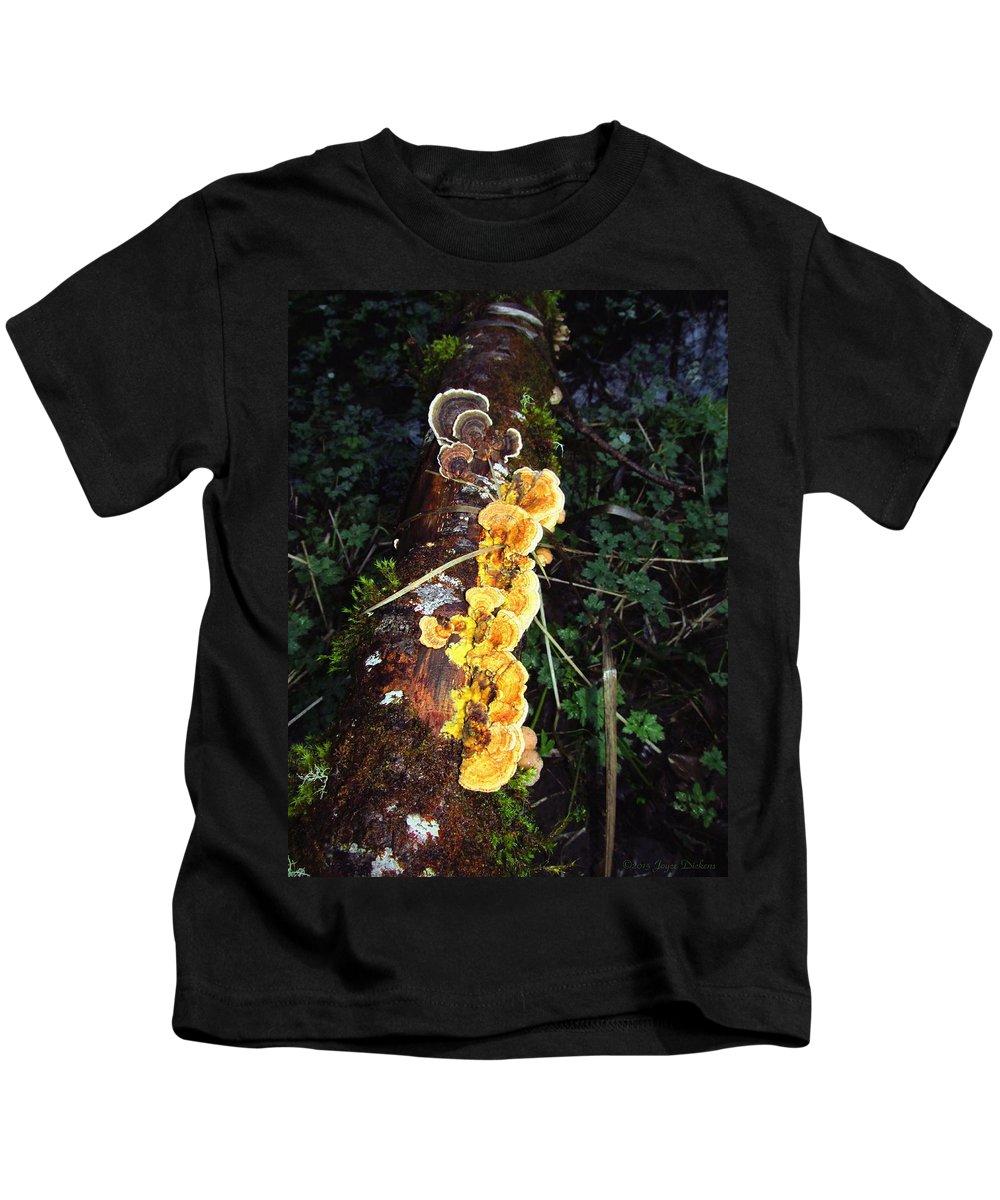Mushroom Kids T-Shirt featuring the photograph Awe Inspiring Fungi Two by Joyce Dickens
