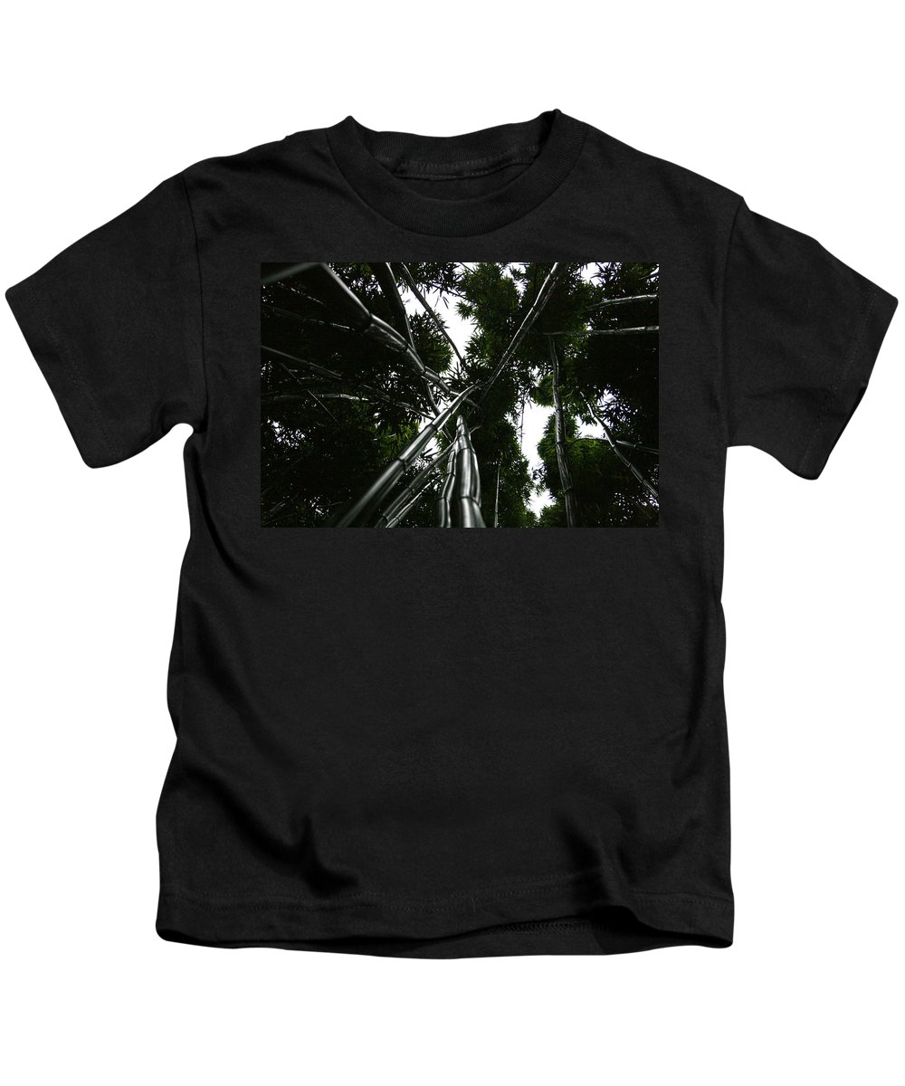 Bamboo Kids T-Shirt featuring the photograph Bamboo Skies 2 by Jennifer Bright