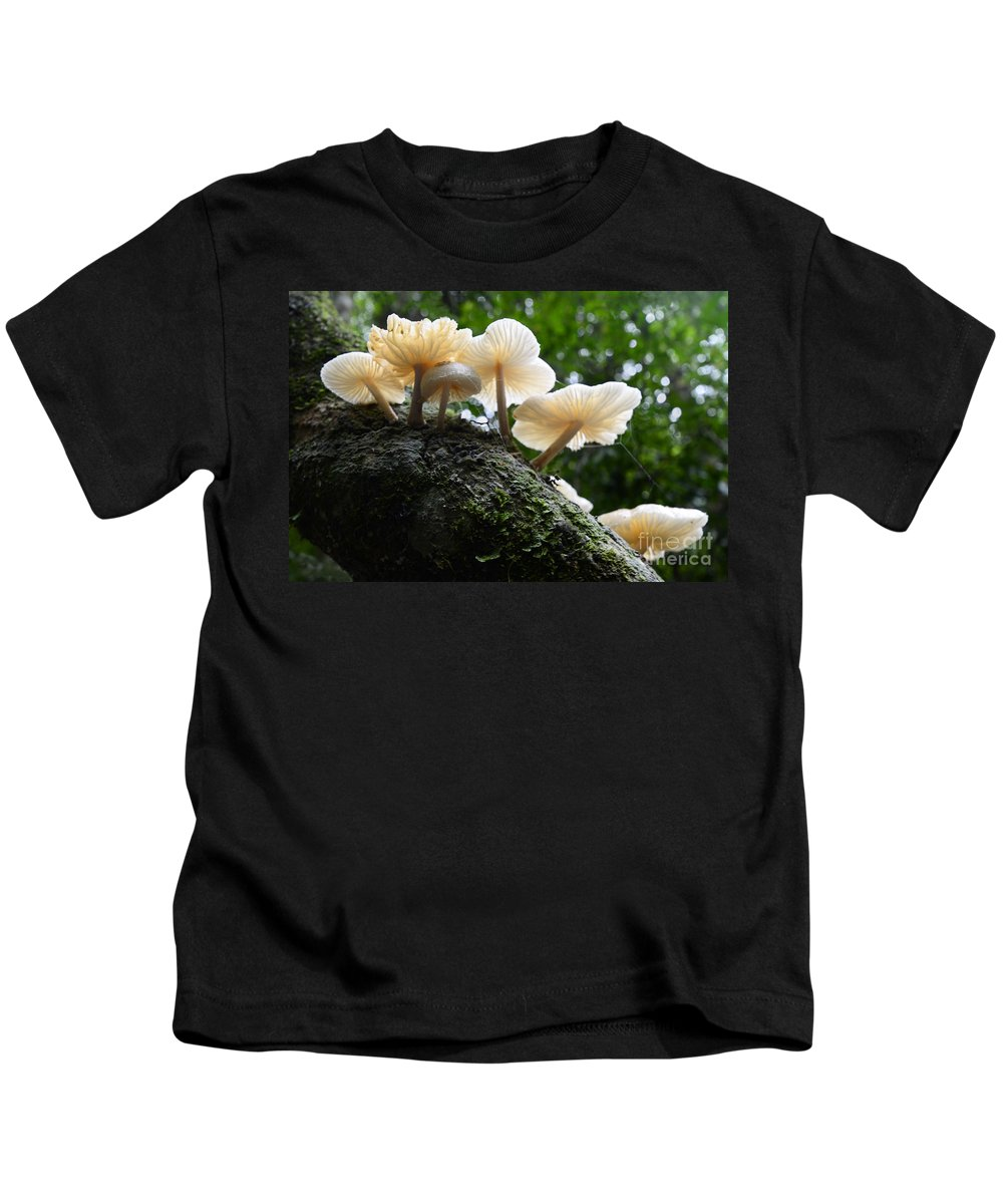 Mushrooms Kids T-Shirt featuring the photograph Beauty Of Mushrooms Argentina by Bob Christopher