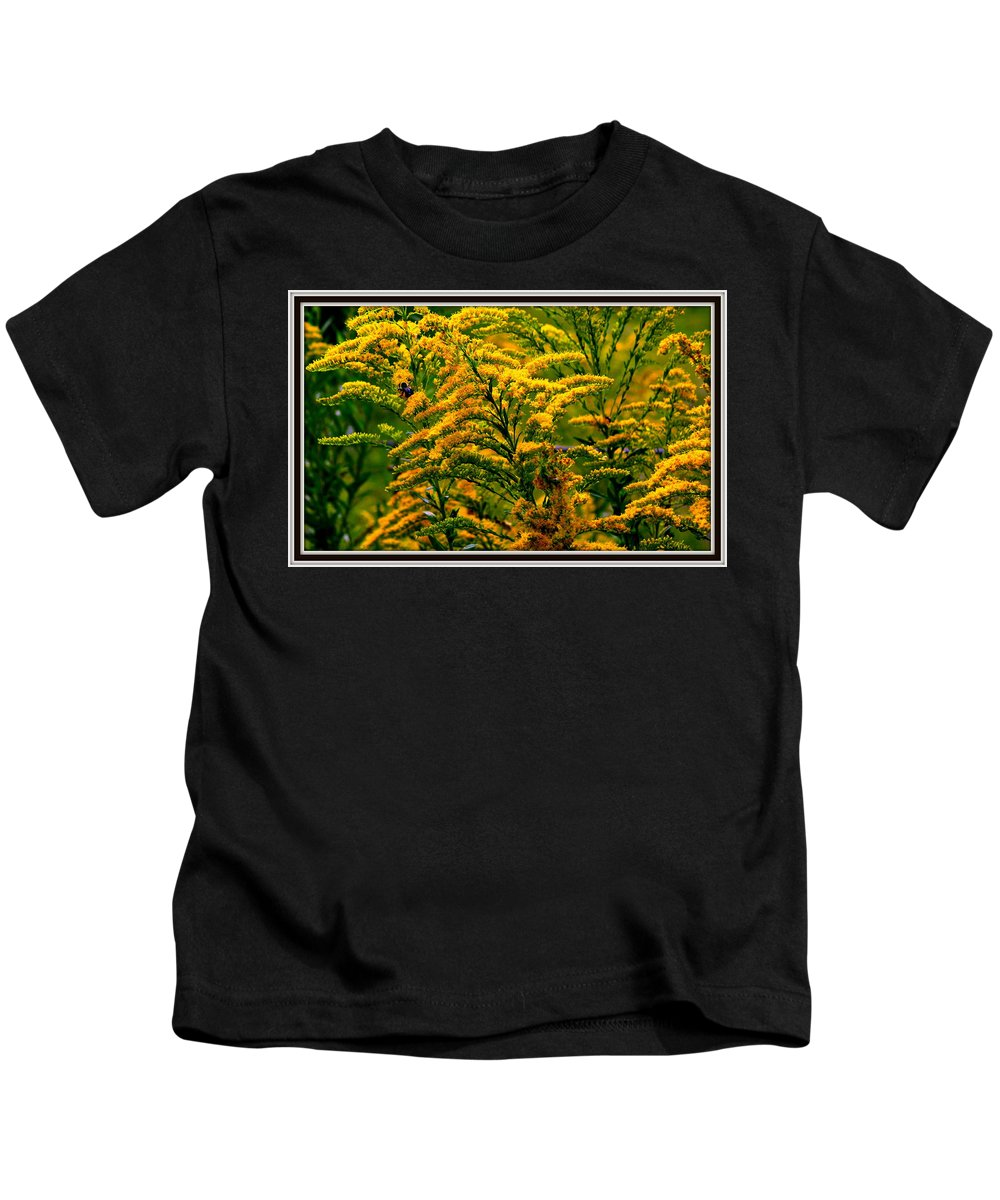 Flower Kids T-Shirt featuring the photograph Bee And Goldenrod by Kathy Barney