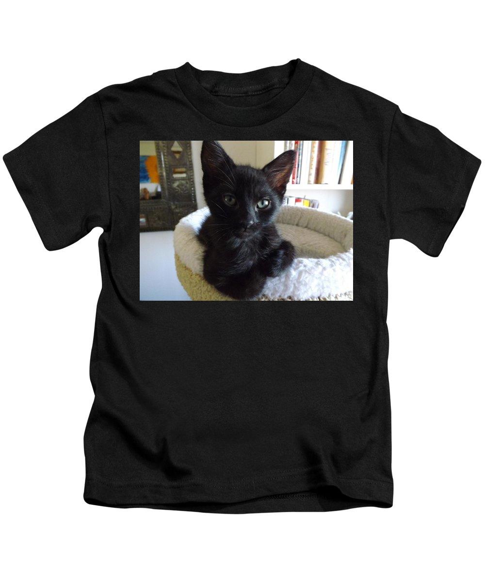 Kitten Kids T-Shirt featuring the photograph Beethoven Keeping Watch by Jussta Jussta