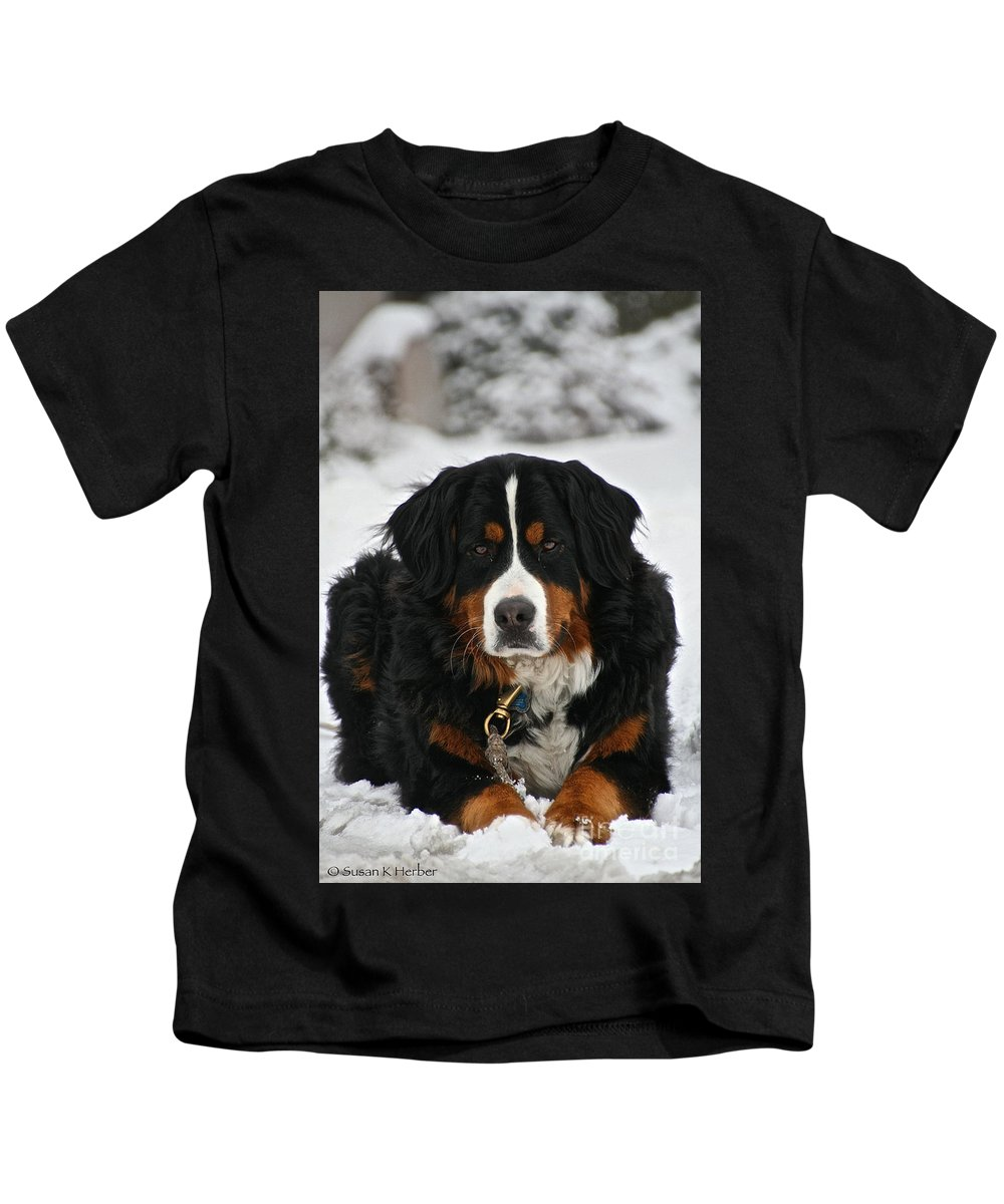 Outdoors Kids T-Shirt featuring the photograph Bernese Mountain Dog by Susan Herber