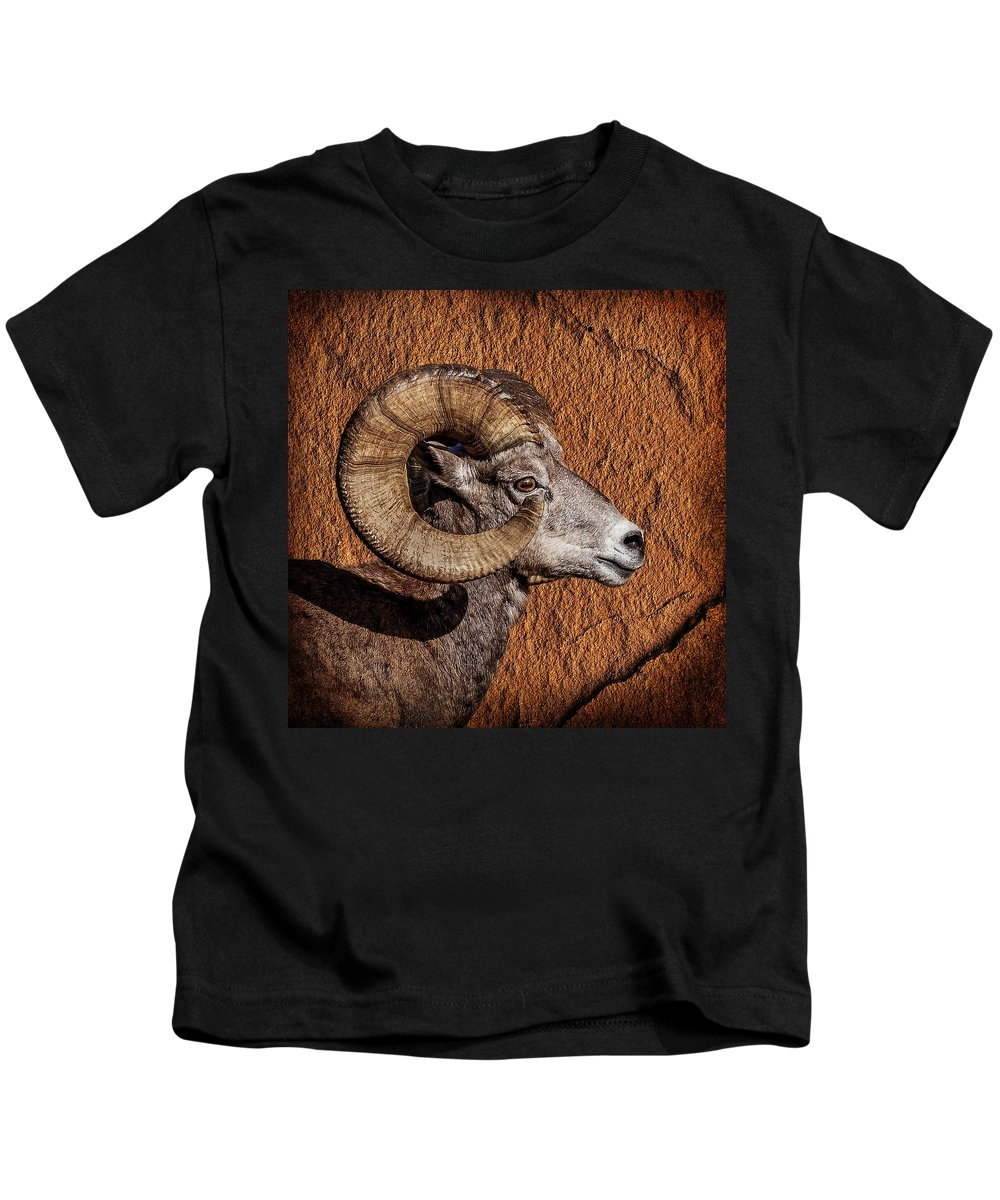 Big Horn Kids T-Shirt featuring the photograph Big Horn by Wes and Dotty Weber