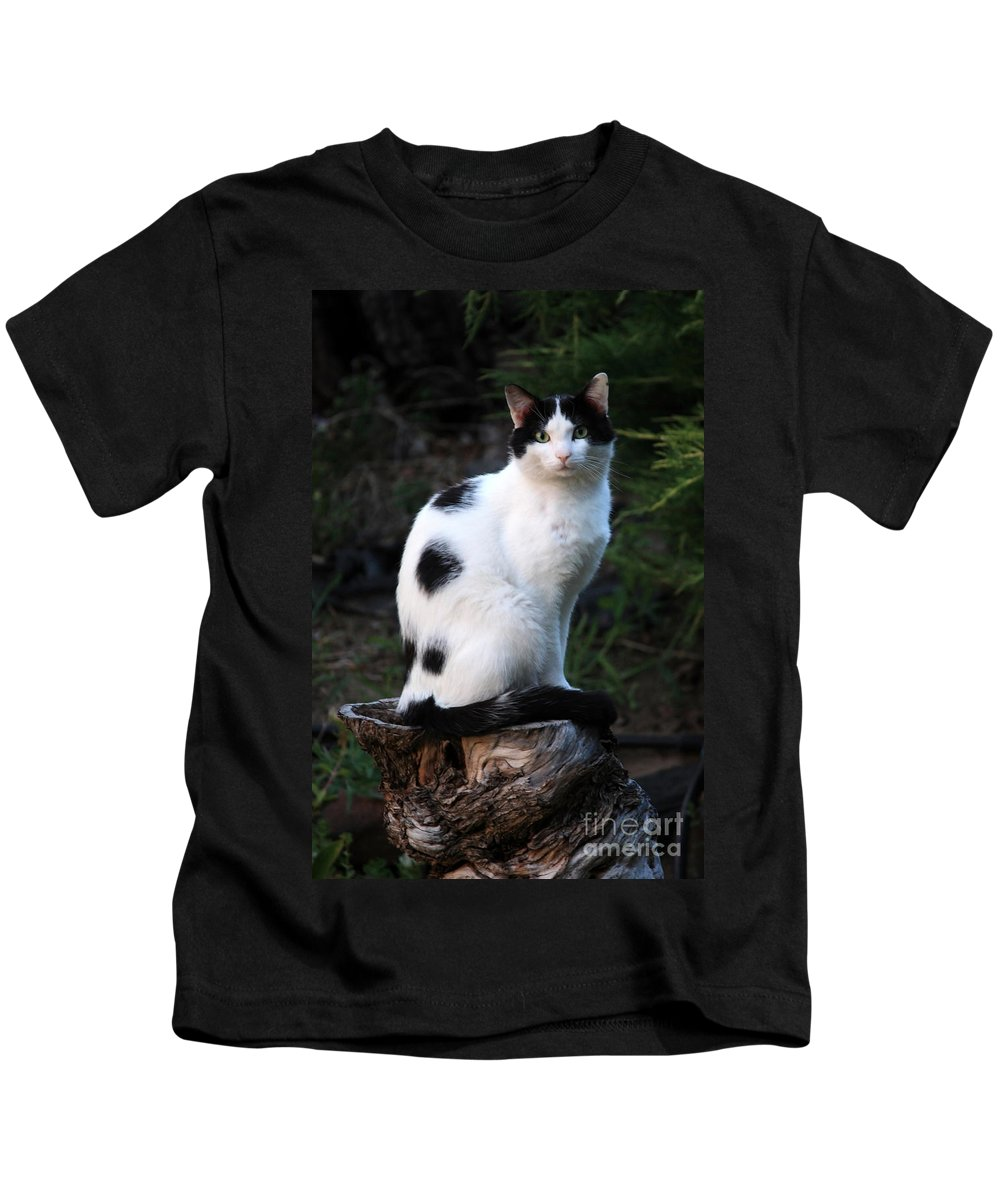 Cat Kids T-Shirt featuring the photograph Black And White Cat On Tree Stump by Carol Groenen