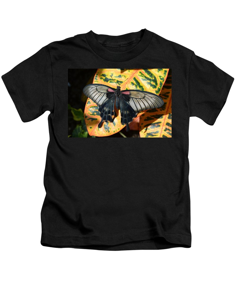 Butterfly Kids T-Shirt featuring the photograph Black And Yellow by Stephanie Bland