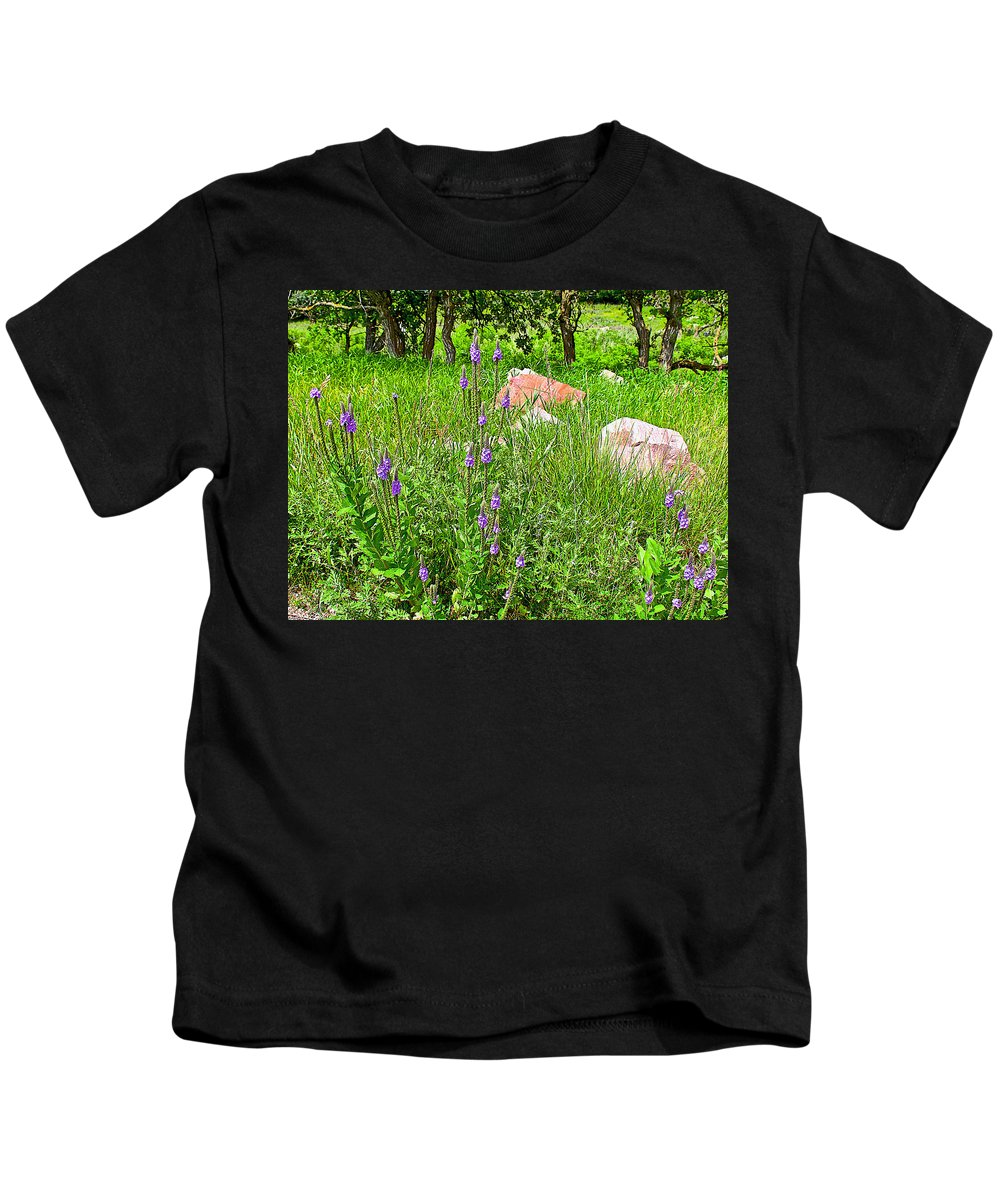 Blue Vervain And Rocks In Pipestone National Monument Kids T-Shirt featuring the photograph Blue Vervain And Rocks In Pipestone National Monument-minnesota by Ruth Hager