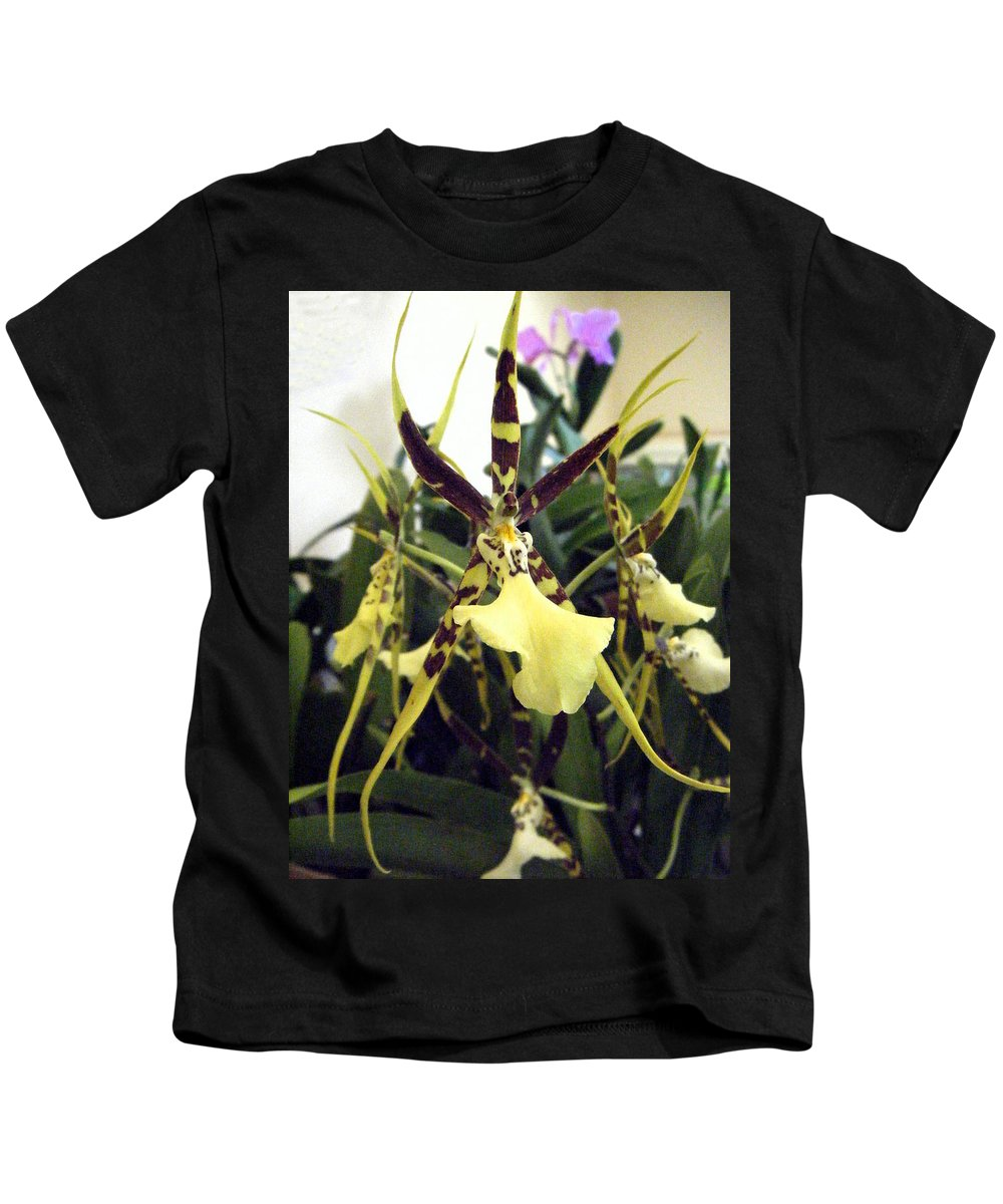 Brassia Rex Orchid Kids T-Shirt for Sale