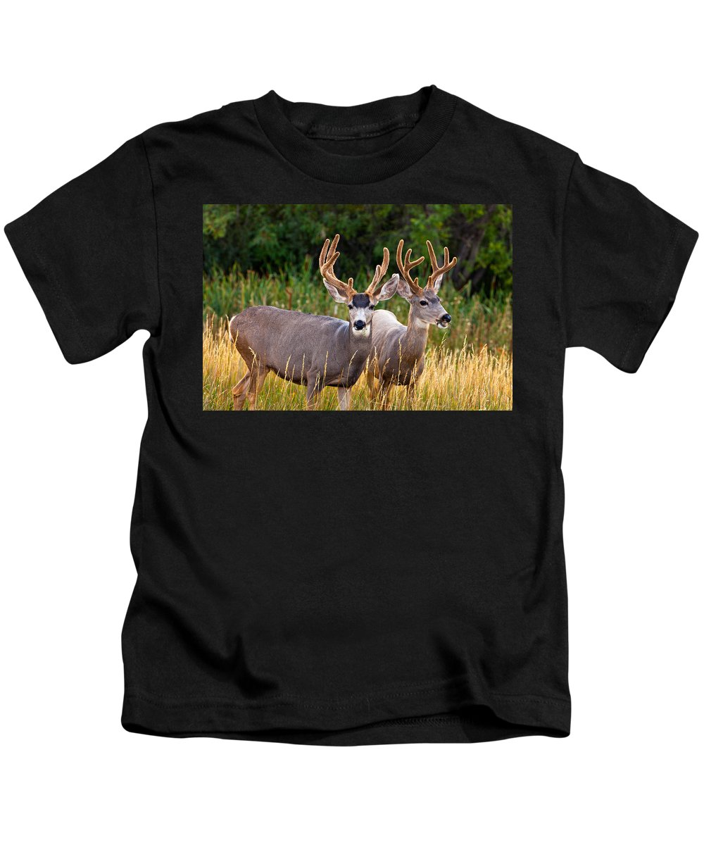 Morning Kids T-Shirt featuring the photograph Breakfast With Friends by Darren White