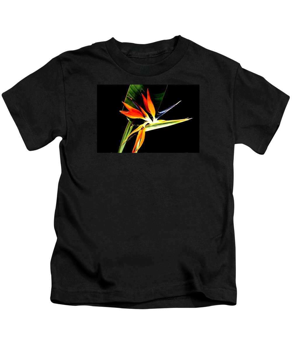 Bird Of Paradise Kids T-Shirt featuring the photograph Brilliant by Diane Merkle