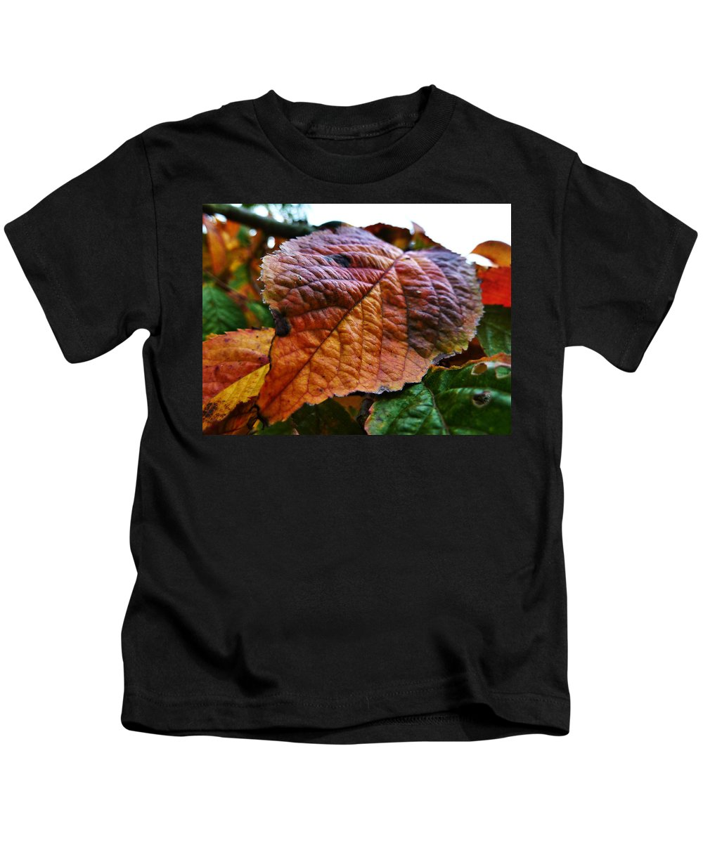 Leaves Kids T-Shirt featuring the photograph Browned Off by Steve Taylor