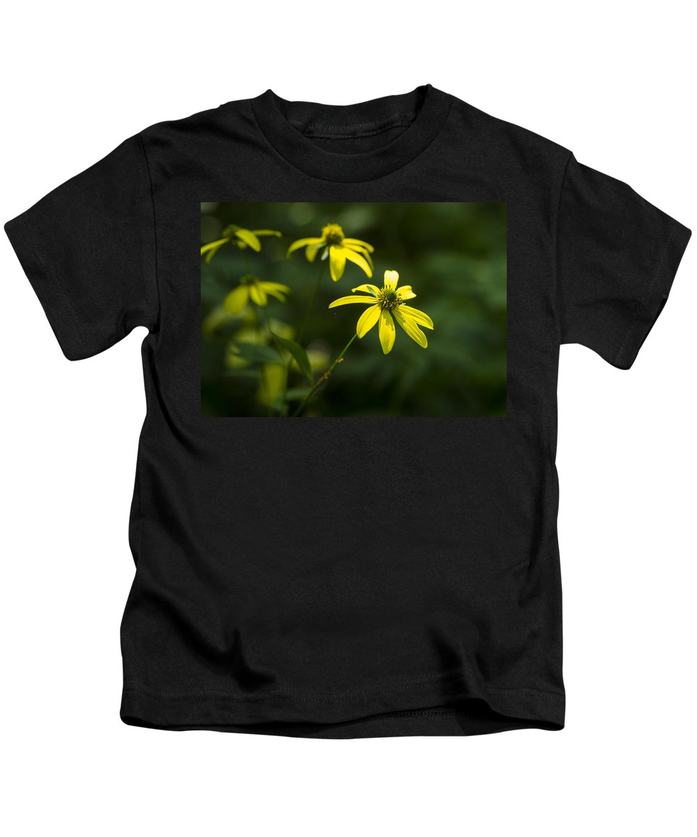 Parfreys Glen Kids T-Shirt featuring the photograph Browneyed Susan by Steven Ralser