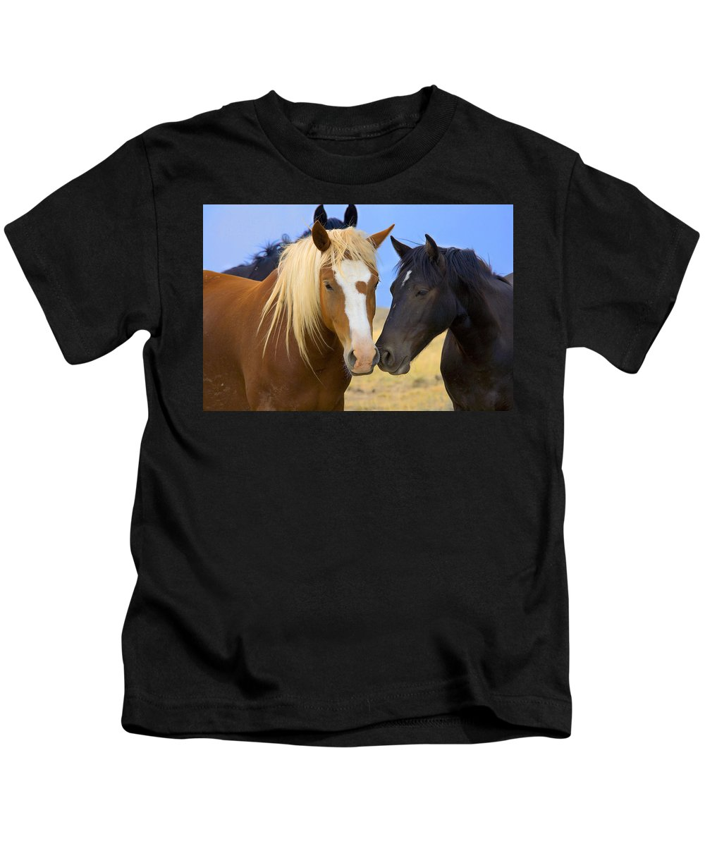 Wild Mustangs Kids T-Shirt featuring the photograph Buddies Wild Mustangs by Rich Franco