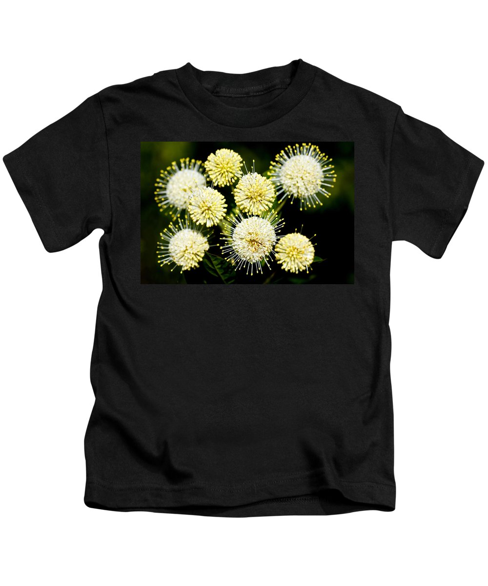 Round Kids T-Shirt featuring the photograph Buttonbush by Rudy Umans