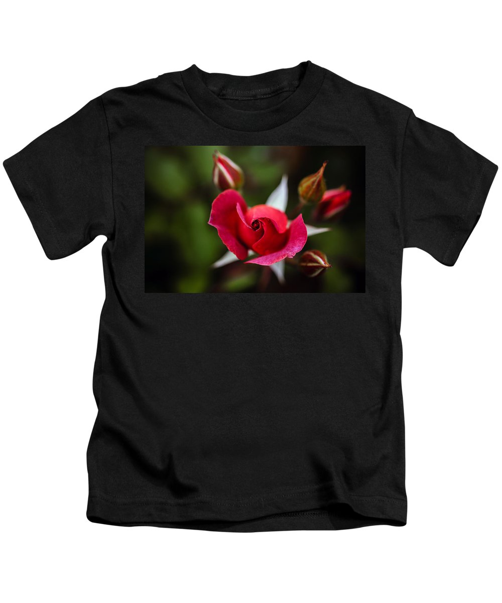 Bumble Bee Kids T-Shirt featuring the photograph Candy Cane Roses by Sennie Pierson